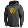 Sudadera con capucha Pittsburgh Steelers Gris